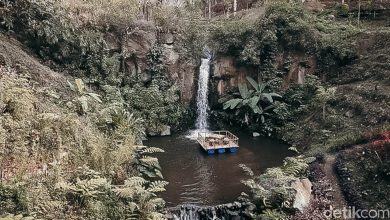 Photo of 3 Coban ( Air Terjun ) Cantik di Kabupaten Malang